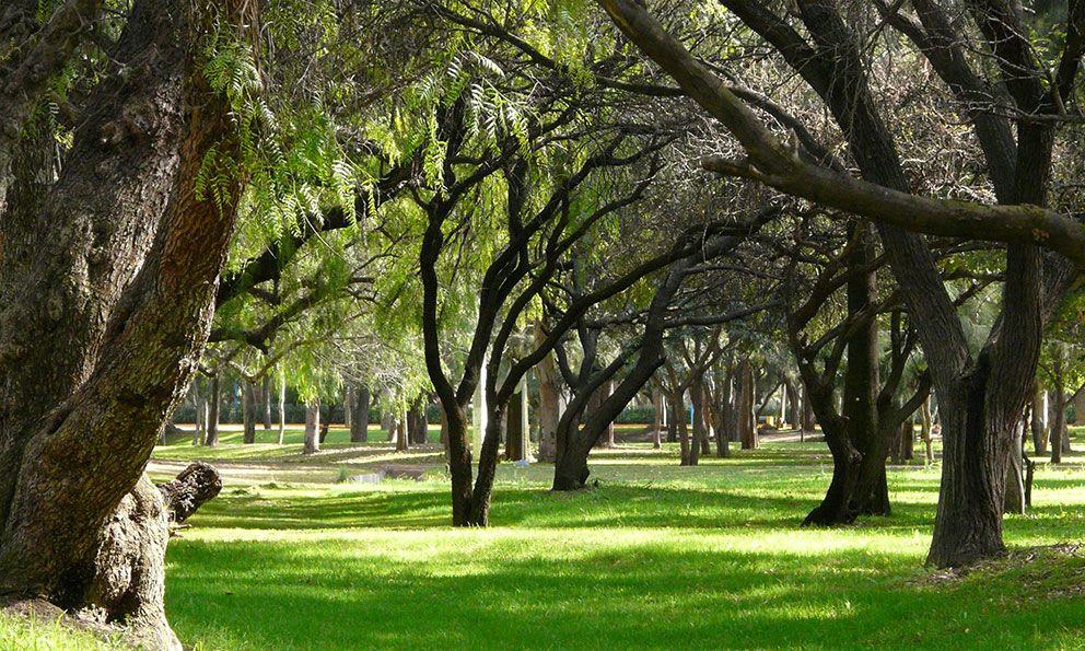Espacios públicos y espacios verdes: De todos y de nadie