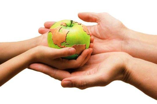 Pérdidas y desperdicios de alimentos: Los enemigos de un sistema alimentario sostenible