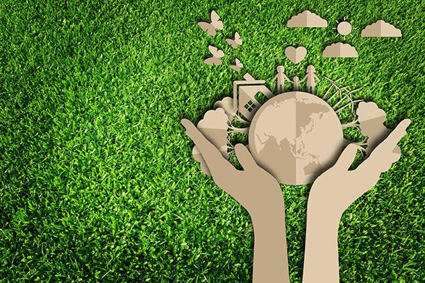 Organizar el desorden, sustentabilidad y progreso no son incompatibles